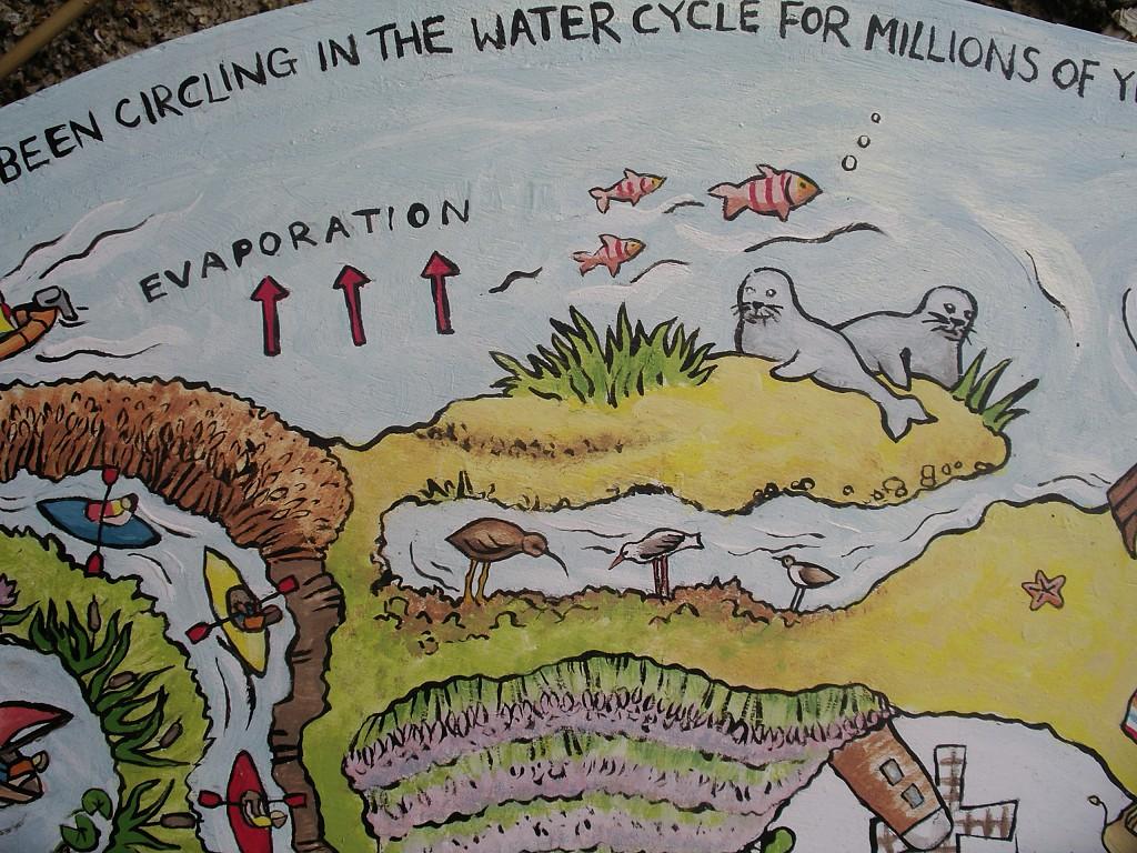 Marsh illustration section from an environmental mural
